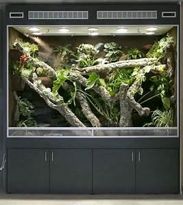 Terrarium Für Pflanzen : sehr gro es regenwaldterrarium in bth 220x90x180 cm ~ Frokenaadalensverden.com Haus und Dekorationen