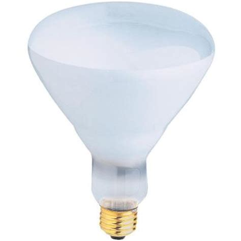 feit electric 500 watt incandescent r40 pool and spa flood