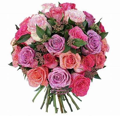 Rose Gifs Flowers Roses Transparent Flower Paradise