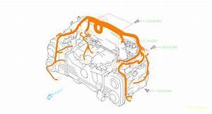 Subaru Legacy User Wiring Diagram 2011