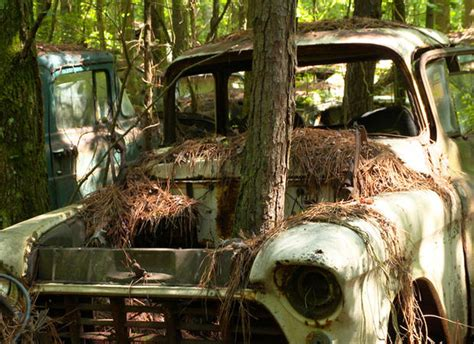 rotting art  museum  junked cars pictures cbs news
