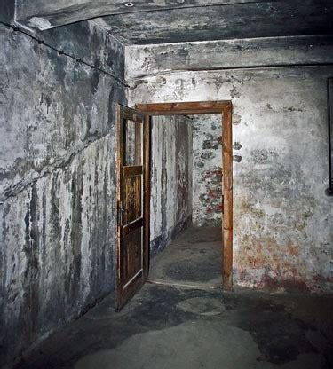 chambre a gaz auschwitz croyez vous aux chambres à gaz la quenelle