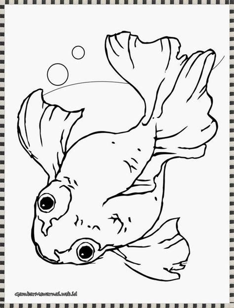 Coloring Ikan by 65 Best Images About Gambar Mewarnai On