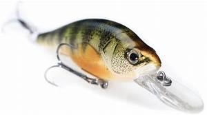 Walleye Fishing Wallpaper | wallpaper, wallpaper hd ...