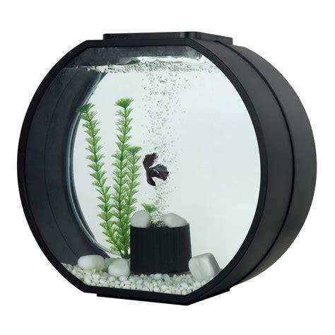 petit aquarium design pas cher aquarium deco o mini 10 litres noir aa animalerie truffaut