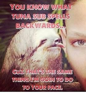 Sloth / funny / humor / lol / laughs / dirty   HUMOR ...