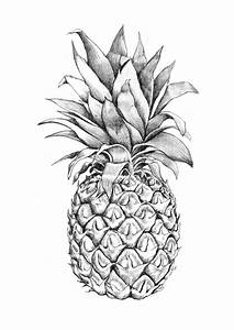 19 best images about Pineapple on Pinterest | Pineapple ...