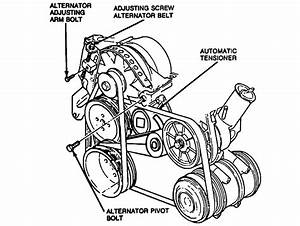 Serpentine Belt  The Belt Location Is So Close To The