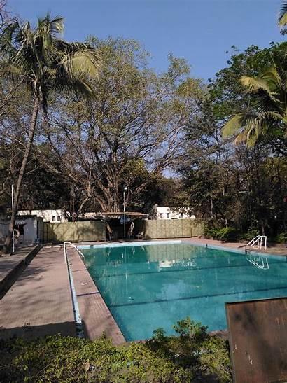 Swimming Pool College