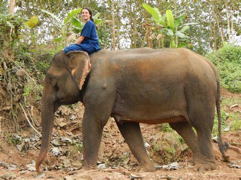 elephant rug luang prabang olifanten en watervallen en tineke