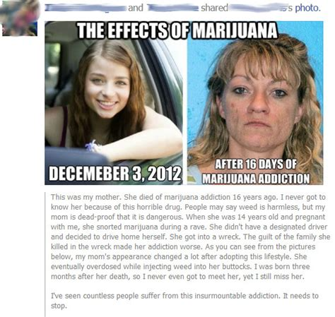 Injecting Marijuanas Meme - a collection of the most awesome pictures and videos of the day caveman circus