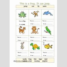 Animals  Can  Animals  Pinterest  Animal, English And Worksheets