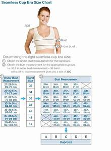 Chart For Bra Sizes And Cup Sizes Marena Seamless Cup