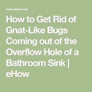 68 best images about must do on pinterest liquid coconut With how to get rid of gnats in your bathroom