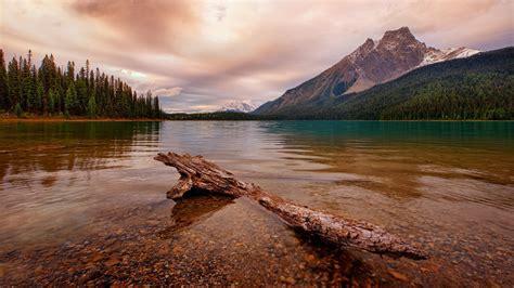 Hintergrundbilder : 1920x1080 px, Kanada, Wolken, Tote ...