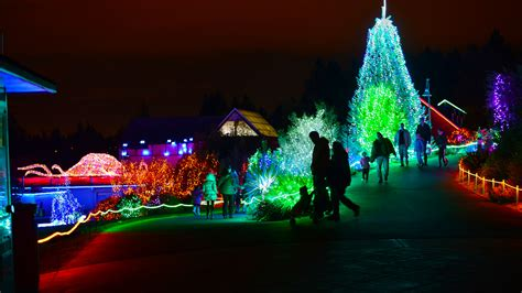 brew lights at zoo lights point defiance zoo lights tacoma washington explored