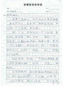 chinese essay sample