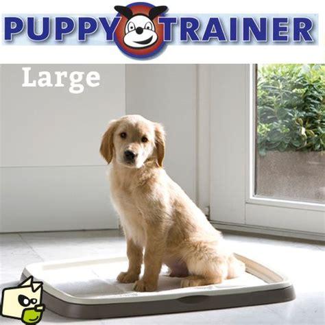 les 25 meilleures id 233 es de la cat 233 gorie puppy trainer sur formation d un chien