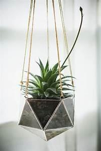 Terrarium Plante Deco : diy d co plante en bocal ferm terrarium forme ~ Dode.kayakingforconservation.com Idées de Décoration