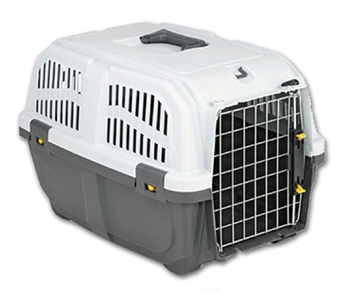 transport boxes  dogs tommiland