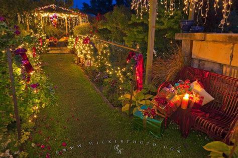 christmas season new zealand photo information
