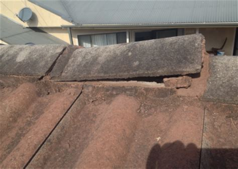 Boral Roof Tiles Newcastle by Roof Restoration Brays Roofing