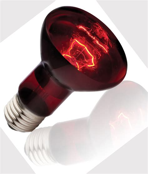 infrared heating lamp lighting  ceiling fans