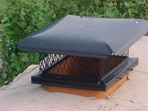 Chimney Caps Keep Animals Out