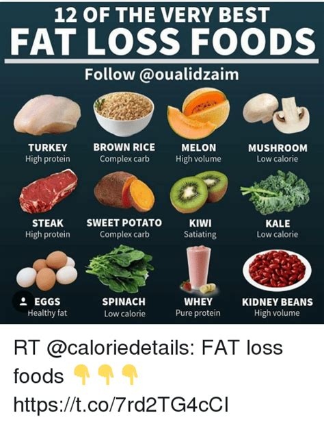 In general, the daily if you are looking to gain weight, see the section on select meal portions for eating more calories, and the article on high calorie weight gain meal plans. What Foods Are Very High In Protein - ProteinWalls