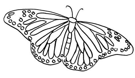 monarch butterfly template   clip art