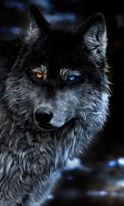 Wolf Fantasy Heterochromia Wallpapers Iphone 4k Wolves