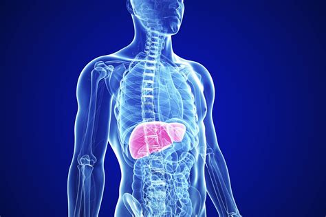Mind Your Liver, Sugar! 3 Liver Diseases You Could Have If