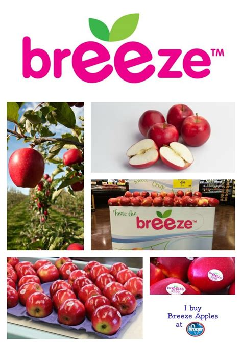 Breeze Apples: Available Now! | Apple, Fruit company ...