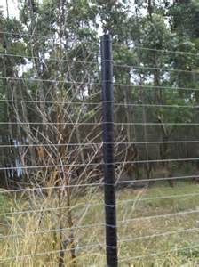 Fence with Metal Poles