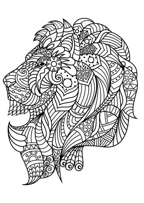 book lion lions adult coloring pages