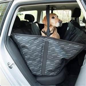 Protection Chien Voiture : allside couverture de protection pour voiture zooplus ~ Dallasstarsshop.com Idées de Décoration