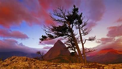 Screensavers Google Screen Savers National Wallpapersafari Parks