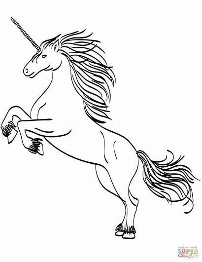Coloring Unicorn Pages Rearing Printable Drawing Paper