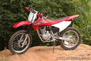 Crf230f Crf230l Crf230m Honda Motorcycle Service Manual