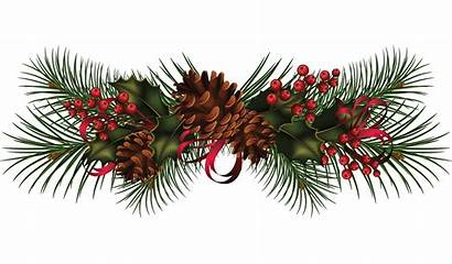 Garland Clip Clipart Holly Pine Wreath Transparent