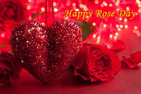 Happy Valentine's Day Roses