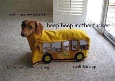 dachshund bus beep beep interior monologue captioning