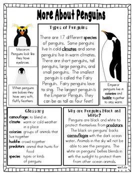 penguin fact packet graphic organizer venn diagram kwl
