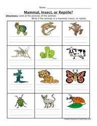 Mammal Fish Bird Worksheet Science Science worksheets
