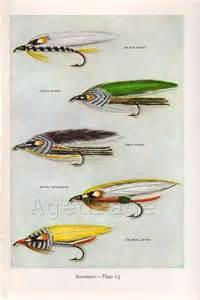 Vintage Trout Fishing Prints