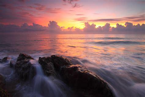 free of backlit dawn dusk