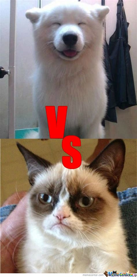 Overly Happy Dog Vs Grumpy Cat By Jerros  Meme Center