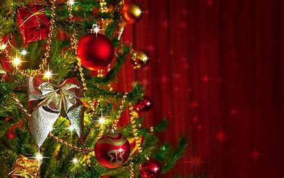 Merry Christmas Tree Backgrounds Wishes Desktop Wallpapers