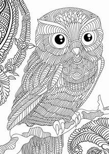 Difficult Owl adults printable coloring page free ...