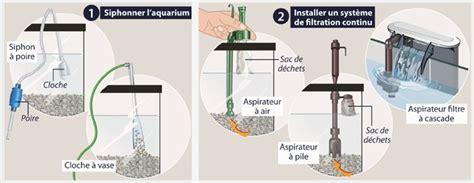 aquarium changement d eau comment changer l eau d un aquarium